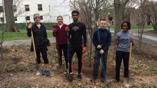 students helping plant trees